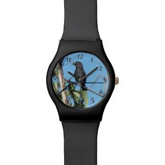 彼女への母Catbirdのギャザーの果実供給の赤ん坊 腕時計