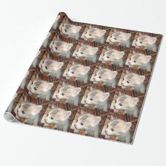 征服の子猫の包装紙2 ラッピングペーパー