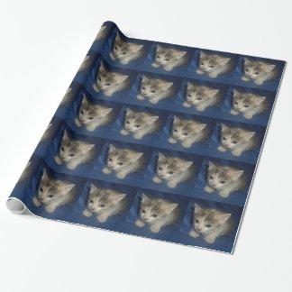 征服の子猫の包装紙6 ラッピングペーパー