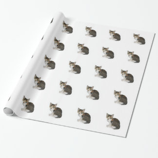 征服の子猫の包装紙8 ラッピングペーパー