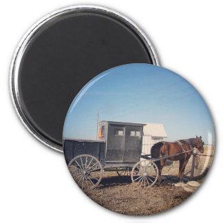 待っているアマン派の馬および乳母車 マグネット