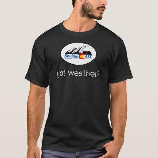 得られた天候か。 Tシャツ(小さいロゴ) Tシャツ
