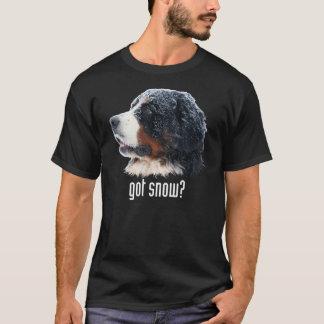 得られた雪か。 暗い服装 Tシャツ