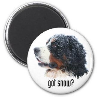 得られた雪か。  Berneseの磁石 マグネット