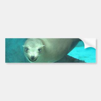 微笑のアシカ-セントルイスの動物園 バンパーステッカー