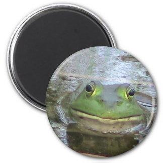 微笑のカエルの顔 マグネット
