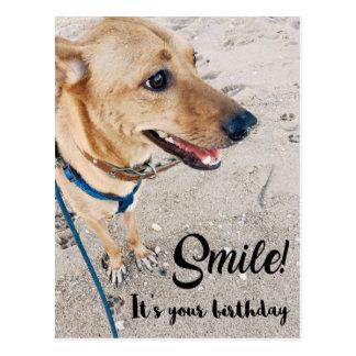 微笑のタイのRidgeback犬のハッピーバースデーの郵便はがき ポストカード
