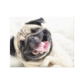 微笑のパグ。おもしろいなパグ キャンバスプリント