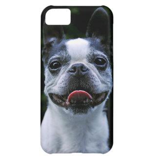 微笑のボストンテリアのiphone 5の場合 iPhone5Cケース