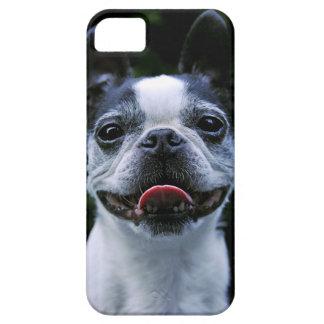 微笑のボストンテリアのiphone 5の場合 iPhone SE/5/5s ケース