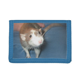 微笑のラットの財布