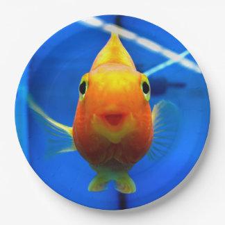 微笑の金魚の紙皿 ペーパープレート