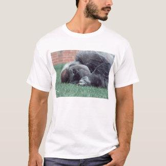 微笑のSilverback Tシャツ