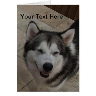 微笑犬 カード