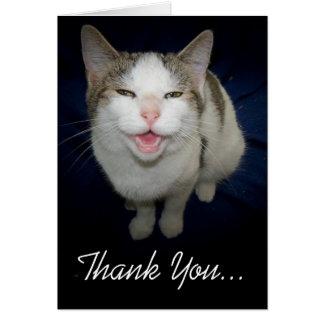 微笑猫のサンキューカード カード