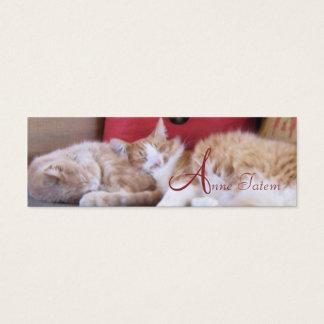心地よい猫のプロフィールカード スキニー名刺
