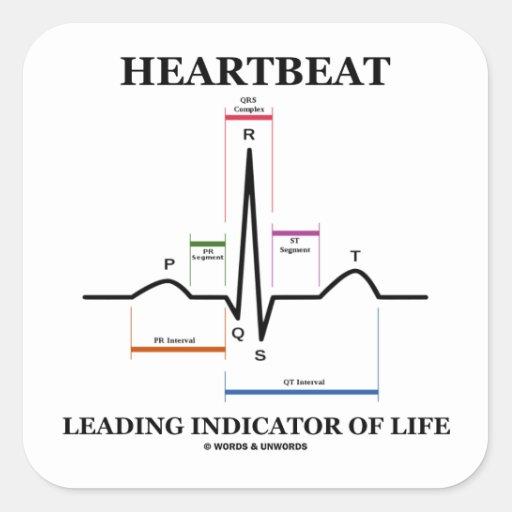 心拍|導くこと|表示器|生命|(ECG/EKG) 正方形シール・ステッカー