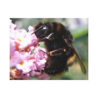 忙しい《昆虫》マルハナバチおよびピンクの花のキャンバスのプリント キャンバスプリント