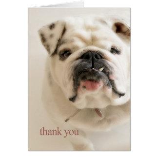 忠節で白いブルドッグは感謝していしています カード