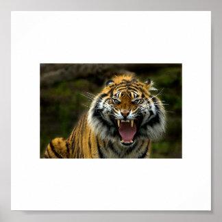 怒っているトラ2 ポスター