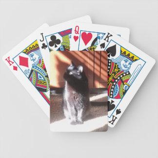 思考の黒猫 バイスクルトランプ