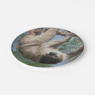 怠惰の紙皿 ペーパープレート