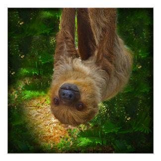 怠惰の雨林ポスター ポスター