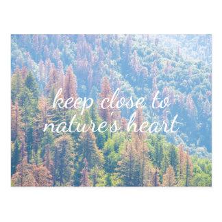 性質のハート-松の木の景色|の郵便はがき ポストカード