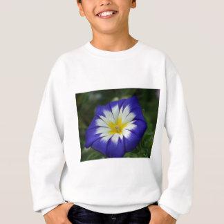 性質の青 スウェットシャツ
