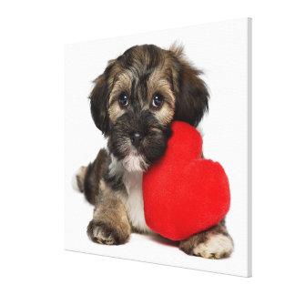 恋人のバレンタインのHavaneseの小犬 キャンバスプリント