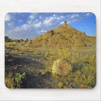 恐竜の地方公園の荒地の形成 マウスパッド