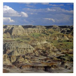 恐竜の地方公園4の荒地の形成 タイル