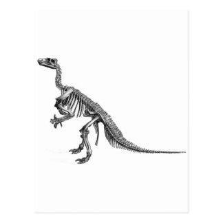 恐竜の選択 ポストカード