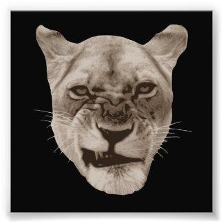 悩まされたうなるライオン猫 フォトプリント