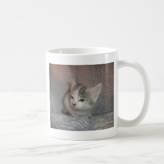 悩まされた子猫 コーヒーマグカップ