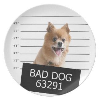悪い犬 プレート