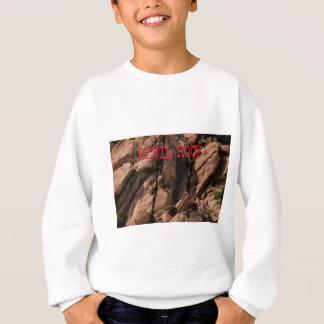 悪魔の石 スウェットシャツ