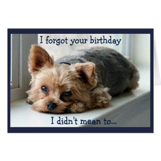 悲しいヨークシャーテリアの遅れて誕生日 カード
