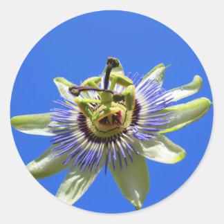 情熱の花のステッカー ラウンドシール