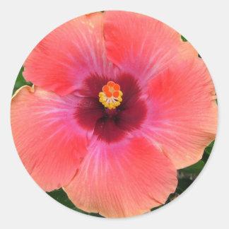 情熱の花のピンクのステッカー ラウンドシール