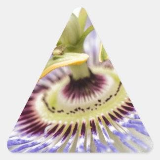 情熱の花 三角形シール