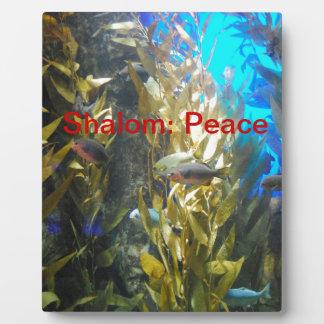 意味の神- Shalomの名前: 平和 フォトプラーク