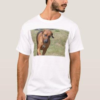 意気揚々と歩くRhodesian Ridgeback Tシャツ