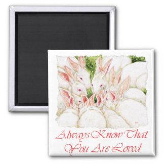 愛されることを-白いウサギ常に知って下さい マグネット