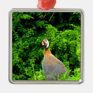 愛するために喜びのホロホロ鳥のguadeloup先に見れば メタルオーナメント