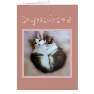 愛のお祝いの子ネコ カード