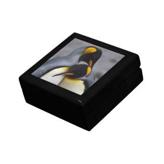 愛のキングペンギン-ギフト用の箱 ギフトボックス