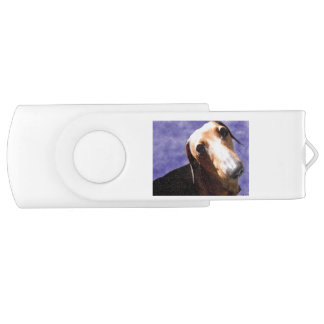 愛の目 USBフラッシュドライブ