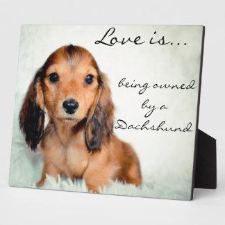 愛はダックスフントピクセルによって所有されています フォトプラーク