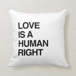 愛は人権です クッション